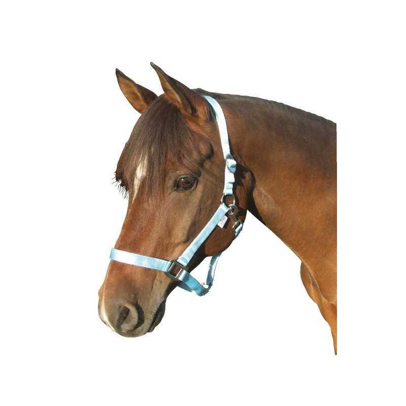 Paardenhalster nylon lichtblauw Cob (2)